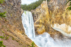 Lower Falls. View at Lower Falls in Yellowstone Grand Canyon seen from uncle Tom's trail. Yellowstone National Park, Wyoming, USA Royalty Free Stock Images