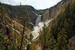 Lower Falls Yellowstone Stock Images