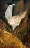 Lower Falls Yellowstone Royalty Free Stock Photo