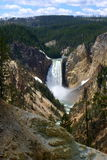 Lower Falls in Yellowstone. A closer view of Lower Falls in Yellowstone National Park Stock Photos