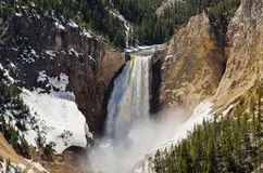 Lower Falls of the Yellowstone. On the Yellowstone River in the Grand Canyon of the Yellowstone at Yellowstone National Park Royalty Free Stock Photography