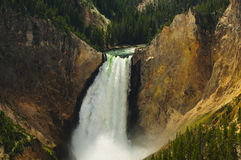 Lower Falls Yellowstone National Park Stock Image