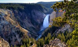 Lower Falls, Yellowstone National Park. Beautiful September afternoon in Yellowstone National Park,  the sound of thunder echoed through the canyon walls Royalty Free Stock Photo