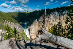 Lower Falls in Yellowstone National Park stock photos