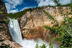 Lower Falls in Yellowstone National Park Stock Images