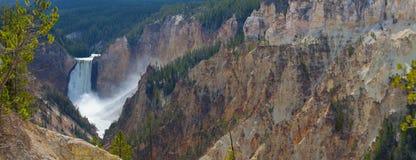 Lower Falls at Yellowstone. Panorama of Lower falls at Yellowstone National Park stock photos