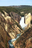 Lower falls, Yellowstone River Royalty Free Stock Image