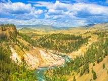 Lower Falls in Yellowstone River royalty free stock photos