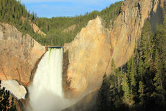 Lower falls of the Yellowstone River. Stock Images