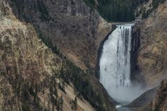 Lower falls on the Yellowstone River royalty free stock photo