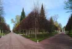 Lower garden in Petergof. Two roads in the Lower Garden, Petergof, St.Petersburg, Russia Royalty Free Stock Photo