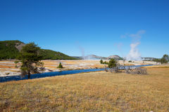 Lower geyser basin Royalty Free Stock Photography