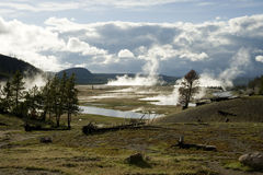 Lower Geyser Basins. In late afternoon in Yellowstone National Park Royalty Free Stock Image