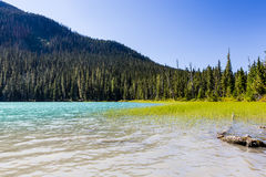 Lower Joffre Lake, Joffre Lake Provincial Park, BC, Canada Stock Photography