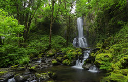 Lower Kentucky Falls, Oregon. Lower Kentucky Falls is one of the most beautiful falls in the Eugene area royalty free stock photo