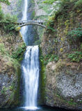 Lower Multnomah Falls Royalty Free Stock Photography