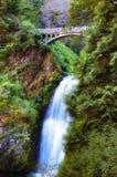 Lower Multnomah Waterfall in the Columbia River Gorge. Lower Multnomah Fall and foot bridge, in the Columbia River Gorge, in Oregon stock photo