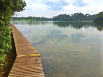 Lower Peirce Reservoir, Singapore Royalty Free Stock Images