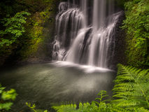 Lower South Falls. Is along the Trail of Ten Falls at Silver Falls State Park inn Oregon Stock Photo