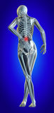 Lower spine. A 3d illustrated file of a womans lower back in pain showing skeleton and inflamed area Royalty Free Stock Photography