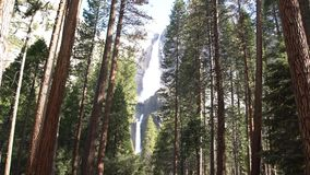 Lower and upper yosemite fall, Yosemite National Park, California, USA stock video