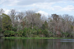 Lower Wekiva River State Park, Florida, USA. Lower Wekiva River Preserve State Park is an 18,000-acre (7,300 ha) Florida State Park located on six miles (10 km) Stock Photo