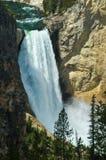 Lower Yellowstone Falls Stock Photos