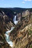 Lower Yellowstone Falls Stock Image