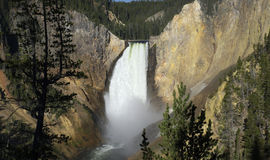 Lower Yellowstone Falls Royalty Free Stock Image