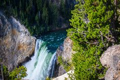 Lower Yellowstone Falls in Yellowstone National Park, Wyoming. Closeup. Lower Yellowstone Falls in Yellowstone National Park, Wyoming Stock Image