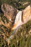 Lower Yellowstone Falls rainbow Royalty Free Stock Photo
