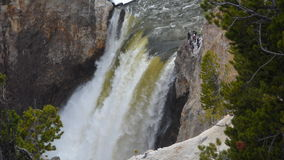 Lower Yellowstone Falls royalty free stock photo