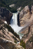 Lower Yellowstone Falls in Yellowstone National Park. Stock Image
