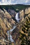 Lower Yellowstone Falls in Yellowstone National Park, Wyoming Stock Photo