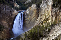 Lower Yellowstone Falls in Yellowstone National Park, Wyoming Royalty Free Stock Photos