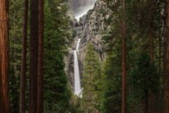Lower Yosemite Fall seen through the trees royalty free stock photo