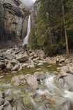 Lower Yosemite Falls Stock Photography