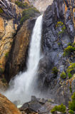 Lower Yosemite Falls. High dynamic range image of lower Yosemite falls with a powerful spring water flow Stock Image