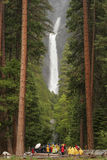 Lower Yosemite Falls. From trail head Royalty Free Stock Photo
