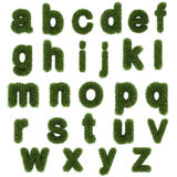 Lowercase letters of green grass alphabet isolated on white. Background Stock Photo