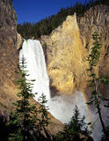 LowerFalls#2. The Lower Falls of the Yellowstone River in Yellowstone National Park, Wyoming Stock Photography