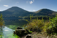 Loweswater algal bloom Stock Photography