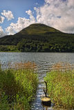 Loweswater and reeds Stock Images
