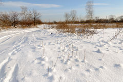 Lowland Covered by Snow Royalty Free Stock Photos