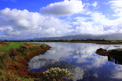 Lowland landscape. Clouds reflecting off the water in an estuary Royalty Free Stock Photo