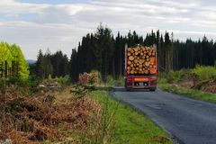 Lowland logging, Galloway, Scotland. Two large logging trucks, exiting the Galloway forest park of Southern Scotland, on their way to the sawmills and the paper Royalty Free Stock Photography