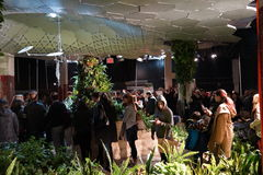The Lowline Lab 38 Stock Image