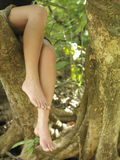 Lowsection Of Barefeet Woman Sitting On Tree Branch. Closeup lowsection of a young woman sitting on tree branch with barefeet Royalty Free Stock Photo