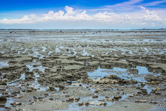 Lowtide seascape Stock Photography
