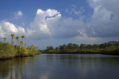 The Loxahatchee River. Loxahatchee National Wild & Scenic River, South Florida Stock Images